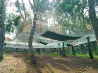 Le parc de jeux suspendus dans les arbres