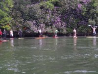 Aventure unique en paddle surf sur la riviere