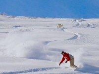 Snowboard a Gresse en Vercors