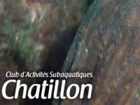 Club d'Activités Subaquatiques Châtillon
