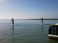 Paddle Surf en Charente Maritime