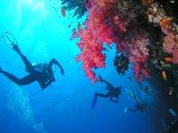 Ambiance sous marine avec Puteaux Plongee.JPG
