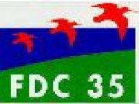 FDC 35