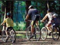 Sorties en famille dans les landes