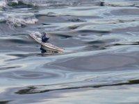 kayak solo en mer