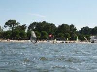 Faites du windsurf a Carcans avec Force 7
