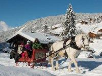 Traineau sur neige