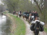 Balade a Cheval le long du canal de la Somme