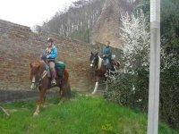 Centre de randonnees equestres dans la Somme