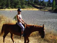 Balade equestre dans le Var