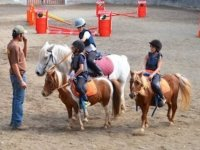 randonnee a poneys