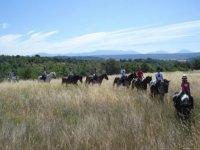 Centre equitation et promenades a cheval dans le 04