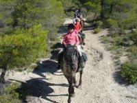 Randonnee equestre et balades en Provence