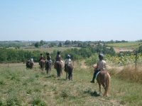 Balade a cheval dans les colines du Tarn