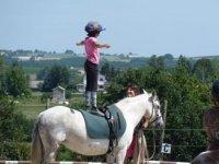 Vivre sa passion equestre