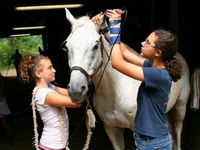 Ecole d'équitation de Touraine