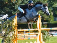 Decouverte et perfectionnement saut d obstacle