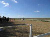 Centre equestre a Vert le Petit