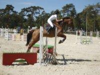 Competition equestre Boissy la Riviere