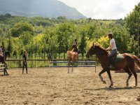 Stage de perfectionnement technique equestre