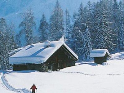 Deep Green Deep White Ski