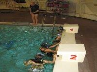 Randonnee Palmee en piscine