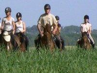 Promenades equestres a Caen