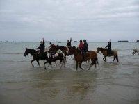 Randonnees equestres sur les plages