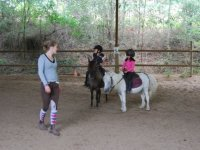 Centre equestre a Bordeaux