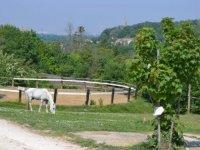 Centre equestre proche de Bordeaux