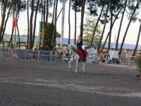 Faire du cheval en Gironde