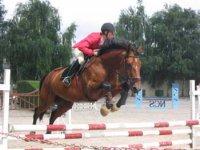 Equitation de competition dans le 14