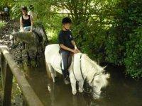 Stages d equitation de pleine nature dans le 14