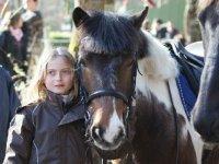 Passion equestre