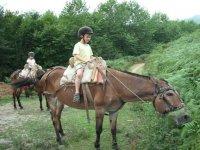 Aventure equestre pour les plus petits