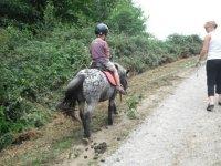 Balade poney a main dans le 64
