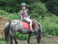 Randonnees equestres a Sare