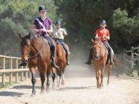 Aventure Equestre sur l Ile de Re