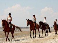 Faire de l equitation Charente Maritime