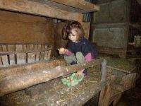 Decouverte de la ferme dans le 06