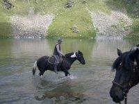 Rando equestre dans le 06