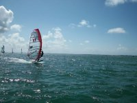 Faire du windsurf