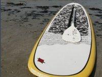 Louer du materiel de paddle surf