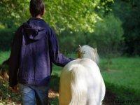 Petite promenade à pied avec Gus