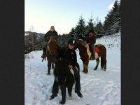 Balades a poney et a cheval pres de St Etienne