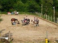Faire du cheval dans la Loire