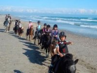 Centre equestre a Maurin dans l Herault