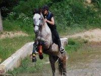 Equitation dans le 34