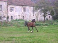 Centre Equestre a Pontpoint