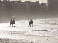 Promenade a cheval sur la plage a Chevillon